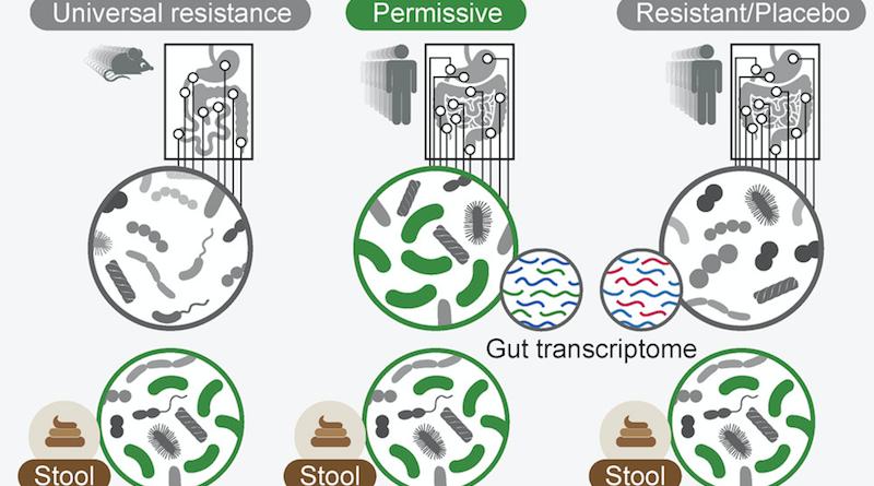 probiotikusan összeszart szar Archives - HOLDKOMP d557304b5e